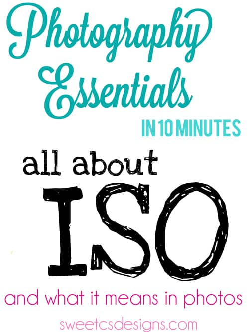 Photography Essentials in 10: ISO