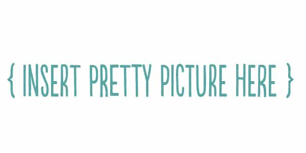 insert pretty picture here