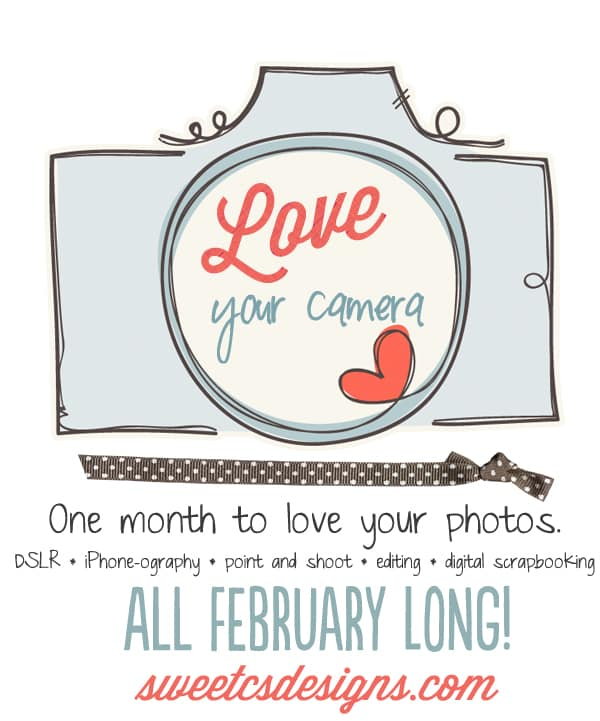love your photos promo poster