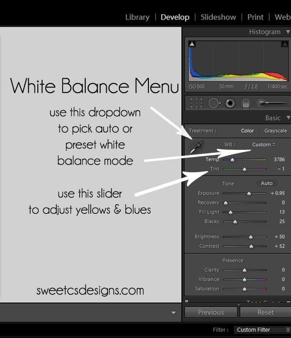 adjusting white balance in adobe lightroom