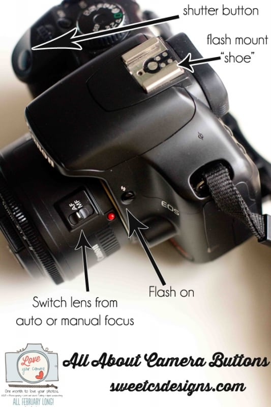 All about camera button