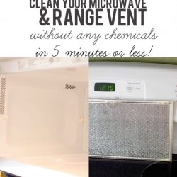 GENIUS! You can easily clean your microwave and range hood- without any chemicals or hard work- in 5 minutes or less! This is such a great tip!