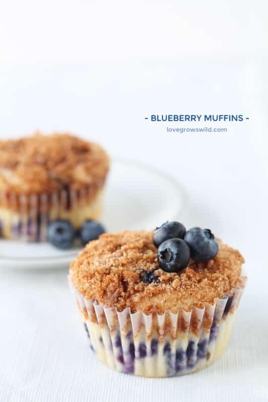 Blueberry-Muffins-final