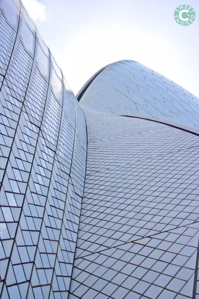 sydney opera house- up close!