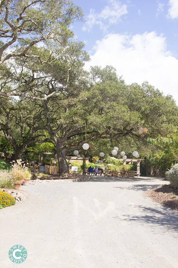 Matanzas Creek Winery