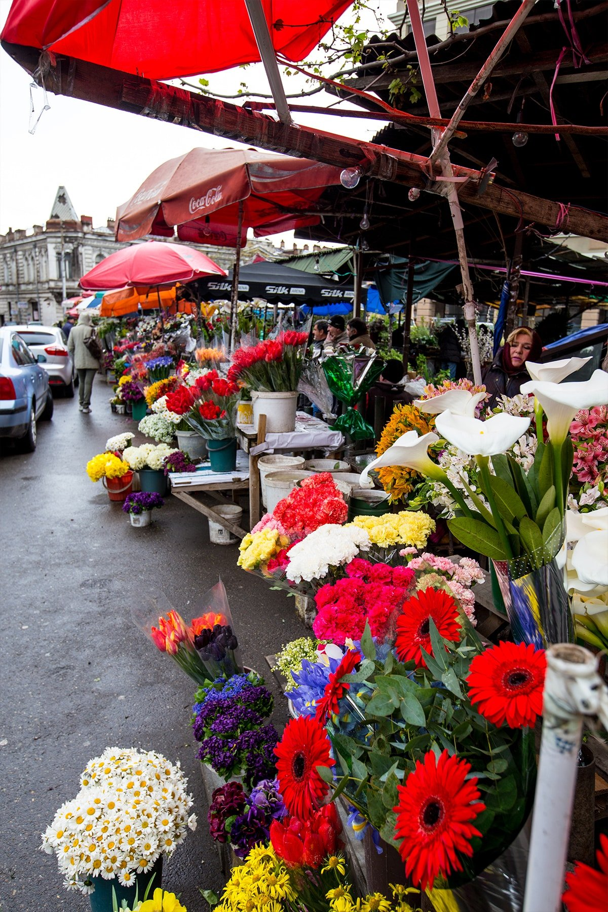 Flower vendors in Tbilisi