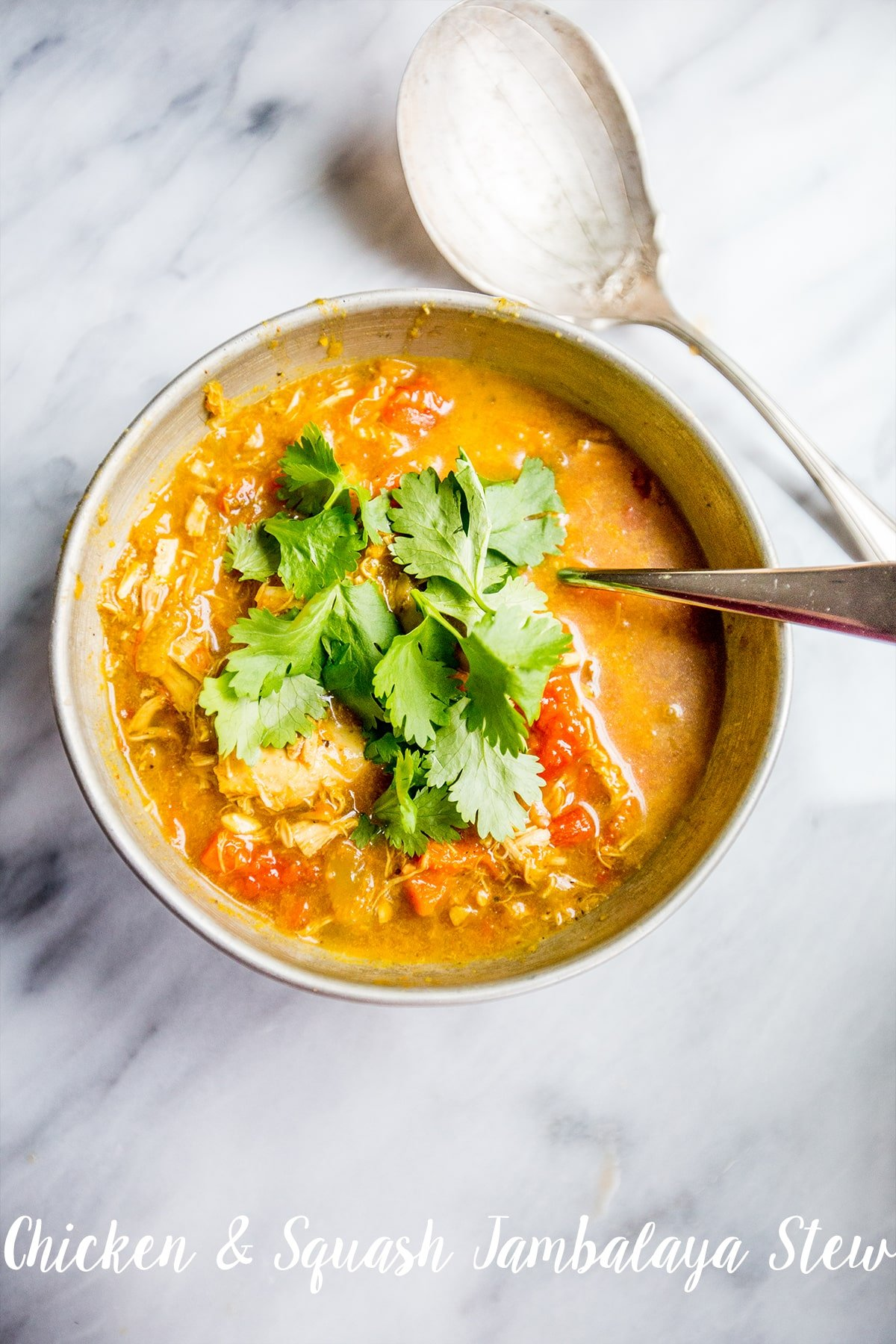 Chicken and squash jambalaya stew- delicious, comforting dinner in a flash!