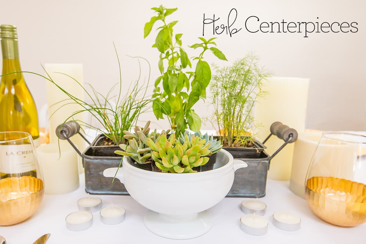 Love this living centerpiece idea- fresh herbs make a great tabletop centerpiece!