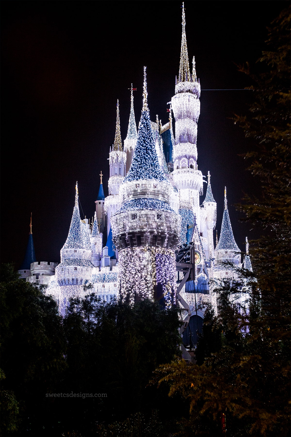 Disney World at Christmas- so pretty at night!