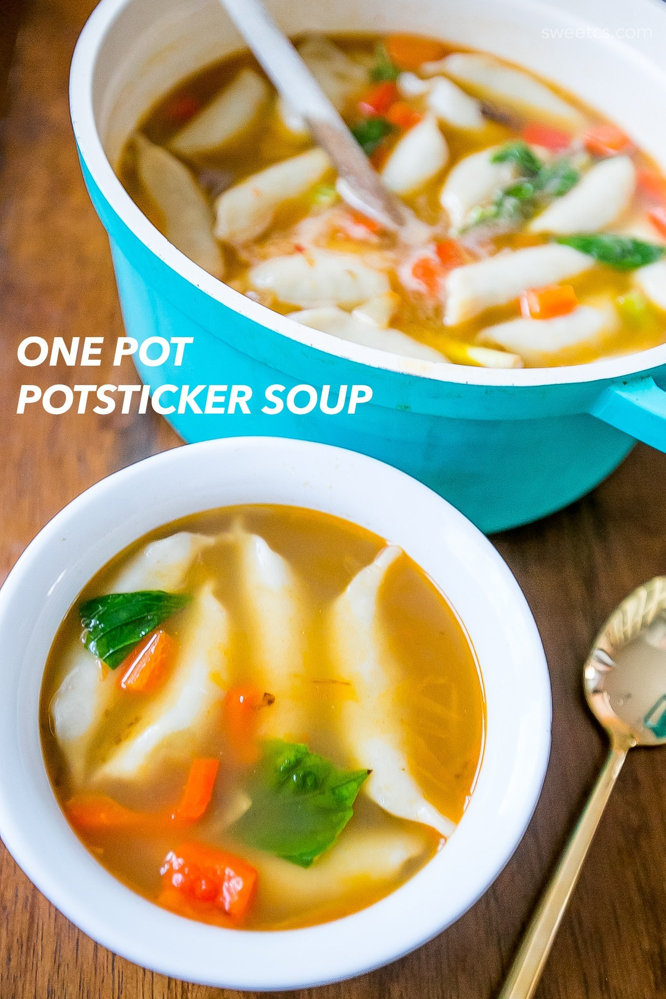 one pot dumpling soup- YUM!