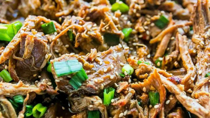 Slow Cooker Honey Soy Pulled Pork