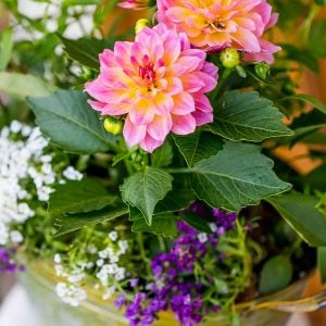 Beautiful ways, How To Arrange a Gorgeous Flower Display