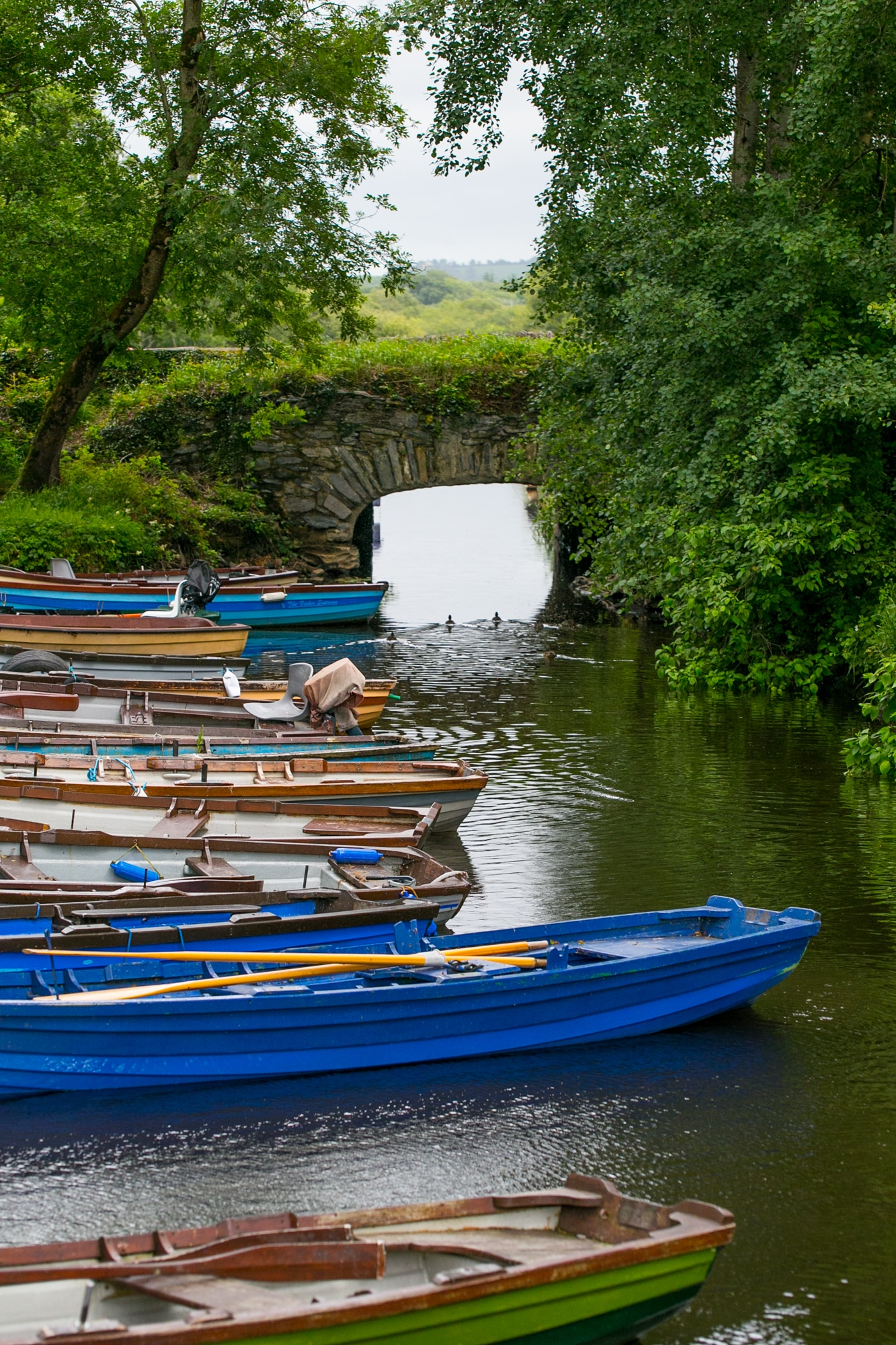 Boats by bridge, Killarney National Park Ireland