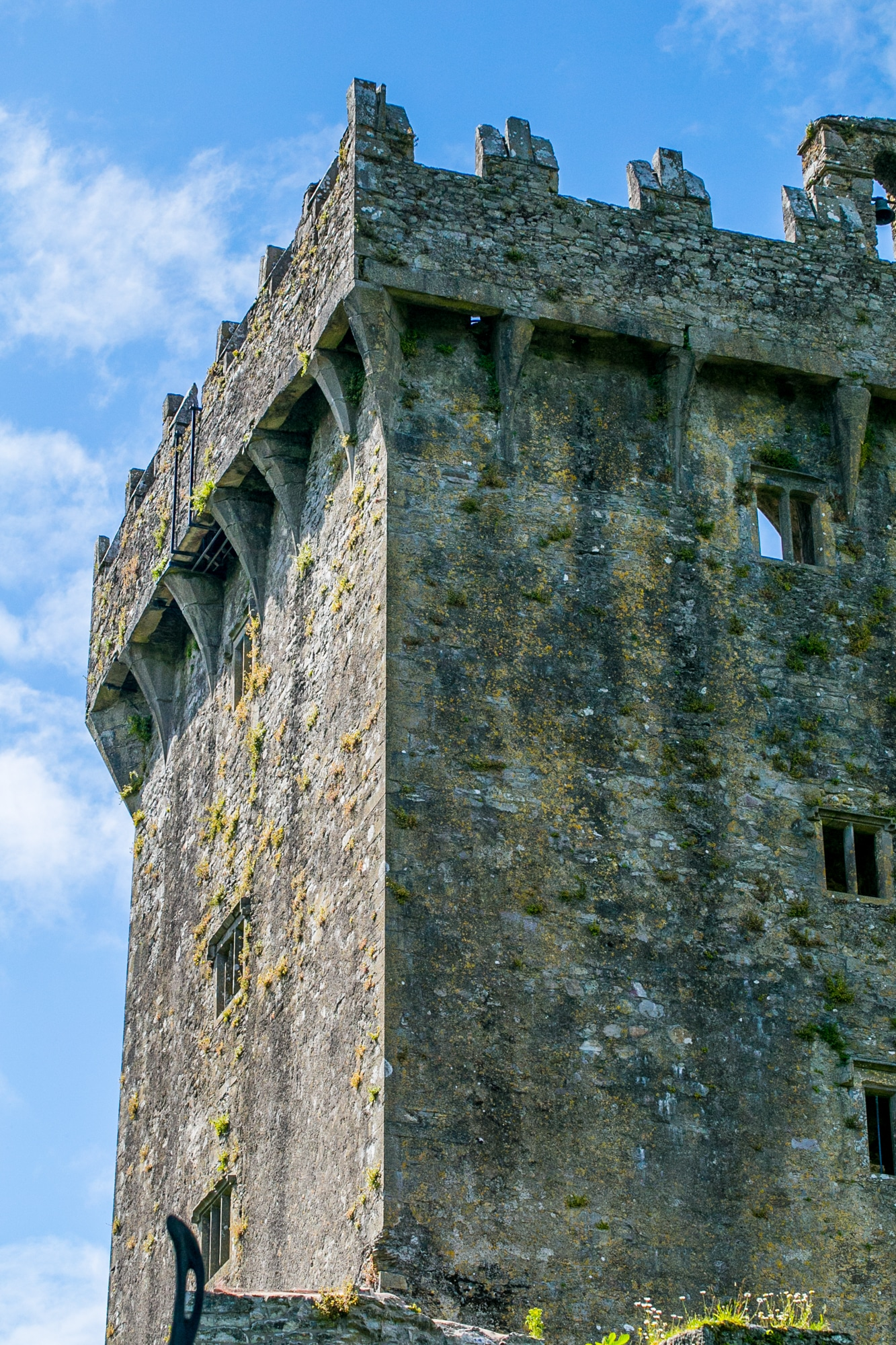 Blarney Castle, Cork County Ireland