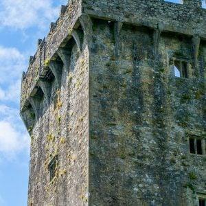 Moss on the Blarney Castle, Ireland