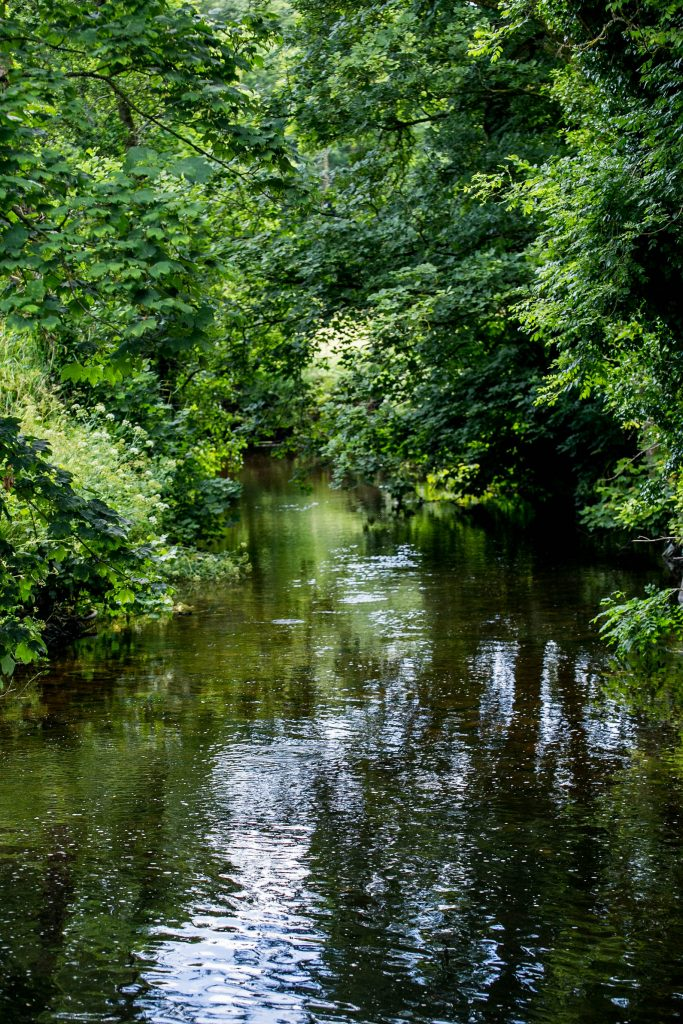 River through Blarney Castle grounds, County Cork, Ireland