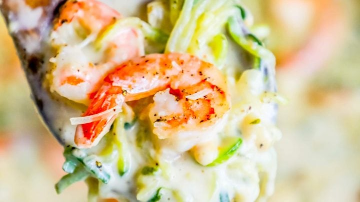 Easy One Pot Creamy Shrimp Alfredo with Zucchini Noodles Recipe