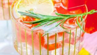 Rosemary Watermelon Lemonade Vodka Cocktail and Mocktail Recipe