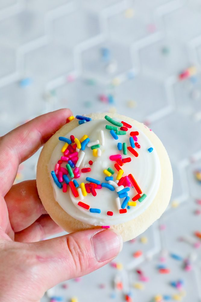 picture of hand holding iced sugar cookie with sprinkles