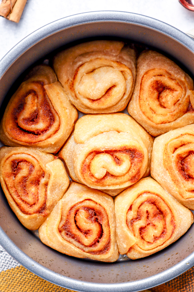 picture of cooked cinnamon rolls in a pan from instant pot ready to be iced