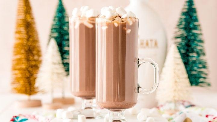 Rumchata Hot Cocoa Cocktail Recipe